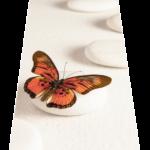 Butterfly Zen 2500 (Portrait _ perspective)